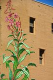 Plant w/ flowers mural with windows in Portland, Oregon Stock Photos