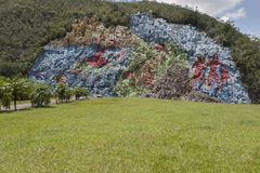 The Mural of Prehistory in the cuban Viñales valley. Prehistoric murals in the valley of Vinales with the lawn, Cuba Royalty Free Stock Images