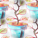 Mural seamless  pattern tree, pot background Stock Photos