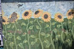 Sunflowers Mural in Portland, Oregon. This is a mural of sunflowers on a building in Portland, Oregon Royalty Free Stock Photo