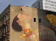 Murale di arte della via nel centro di Lodz, Polonia fotografia stock