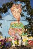 Murales de San Miguel Imagen de archivo libre de regalías