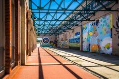 Murali a Richmond, la Virginia immagine stock libera da diritti