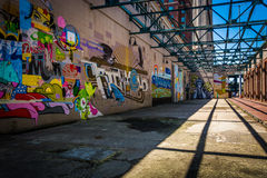 Murals in Richmond, Virginia. Royalty Free Stock Images