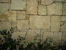 Muratura, lavoro in pietra con i cespugli nel fondo, adatto a fondo, carta da parati Fotografia Stock