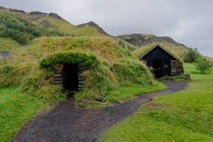 Murawa domy w Iceland obrazy stock