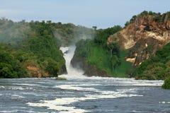 Murchison下跌NP,乌干达,非洲 免版税库存照片