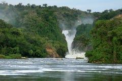 Murchison秋天,乌干达 免版税库存图片