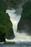 Murchison秋天,乌干达 库存图片