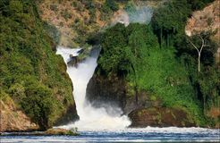 Murchison  falls. Murchison  falls roar, clamped between two rocks covered with greens Royalty Free Stock Images