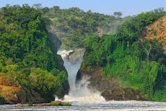 Murchison Falls Royalty Free Stock Photos