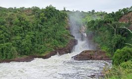 Murchison Falls in Africa Stock Images