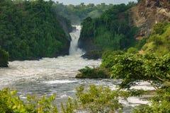 Murchison Falls i Uganda royaltyfri fotografi
