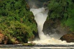 Murchison Falls Landscape. Murchison Falls Ugana and the lush green jungle surrounding its cliffs royalty free stock photos