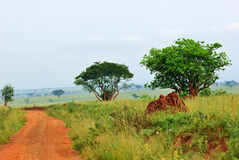Murchison Falls national park, Uganda Stock Images