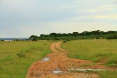 Murchison Falls nationalpark Safari Track Royaltyfri Bild