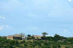 Murchison Falls NP,乌干达,非洲 免版税库存图片