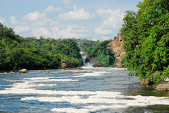Murchison Falls on the Victoria Nile, Uganda. Murchison Falls on the Victoria Nile, northern Uganda Stock Images