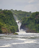 Murchison Falls Stock Photos