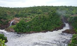 Murchison Fals w Afryka Obrazy Royalty Free