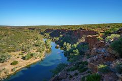 Murchison river from hawks head lookout, kalbarri national park, western australia 17. Murchison river from hawks head lookout in kalbarri national park on a royalty free stock image