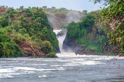 Murchison spada na Wiktoria Nil rzece, Uganda Obraz Royalty Free