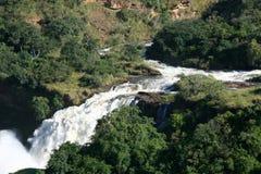 Murchison Spadać NP, Uganda, Afryka Obraz Stock