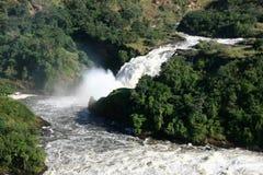 Murchison Spadać NP, Uganda, Afryka Obraz Royalty Free