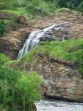 Murchison Spada w Afryka Zdjęcie Royalty Free