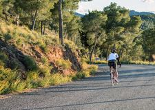 Murcia, Spain - April 9, 2019: Pro road cyclists enduring a difficult mountain ascent on his cool bicycle royalty free stock photography