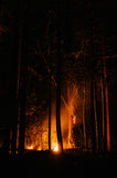 Murderous beautiful wildfire Royalty Free Stock Images