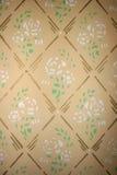 Mure a textura Fotografia de Stock