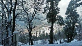 Muree wzgórza Zdjęcia Royalty Free
