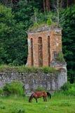 Muren van een geruïneerd kasteel Stock Foto's