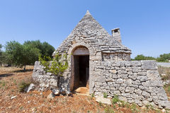 Murge (Apulia, italy) - Trullo e oliveiras Fotos de Stock Royalty Free