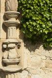 Murgröna och arkitektonisk detalj Arkivfoton
