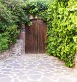 Murgröna-täckt gammal dörr Arkivfoton