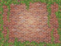 Murgrönavindar på bakgrunden för vägg för röd tegelsten Arkivbilder