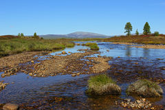 Murgudu liten vik i södra Yakutia Royaltyfri Bild