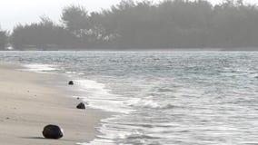 Muri Lagoon in Rarotonga Cook Islands stock video