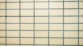 Muri le mattonelle Fotografia Stock Libera da Diritti