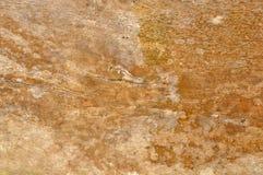 Muri le plance & gli ambiti di provenienza di legno dell'estratto di lerciume di struttura Immagine Stock