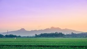 Muria del supporto di alba, Indonesia immagini stock libere da diritti