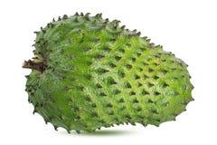 Muricata Annona oursop bär frukt Sugar Apple, det isolerade ustardäpplet fotografering för bildbyråer