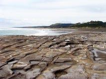 Muriwai海滩。 新西兰。 库存图片