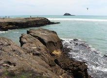Muriwai海滩。 新西兰。 图库摄影
