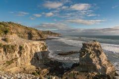 Muriwai海滩的gannet殖民地概要 库存图片