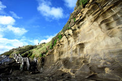 Muriwai Beach. Located along the west coast of North Island, New Zealand, comprises of cliff and sand beaches. Popular for surfing, fishing and other outdoor Stock Images