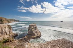 Muriwai Beach. And gannet colony on The West Coast of The North Island, Auckland, New Zealand Royalty Free Stock Photos