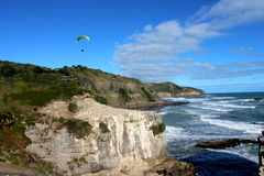 Muriwai beach. The largest gannet habitat near Auckland,  wonderful vacation spot for Kiwi Stock Photography